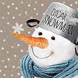 20 Servietten Schneemann Winter-Landschaft Weihnachten Schneeflocken 33 x 33