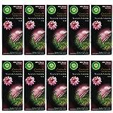 10 x Air Wick Mini Spray Nachfüller Peruanische Andenblüte 14ml für One Touch