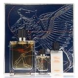 Hermes: Terre d'Hermes homme/man, Geschenkset (Eau de Toilette Spray 100 ml + Eau de Toilette Spray 12.5 ml + After Shave Balsam 40 ml)