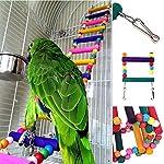 Bello Luna Rainbow Parrot Ladder Flexible Wooden Swing Toys for Bird 10