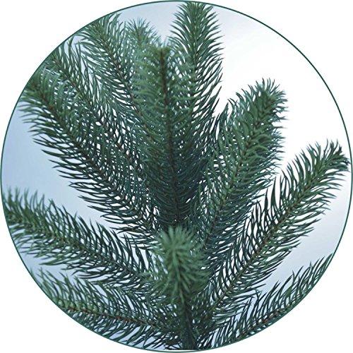 Lönartz® Naturgetreuer künstlicher Weihnachtsbaum PE-Spritzguss (ohne Beleuchtung), Höhe: 85cm / Ø60cm (PE-BO85)