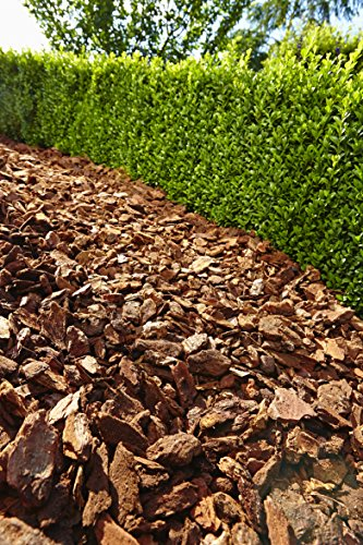 Floragard Mulch Pinienrinde 25-40 mm 2 x 60 L, grob -