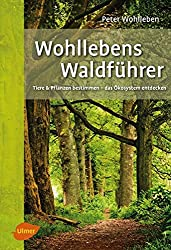 Wohllebens Waldführer: Tiere und Pflanzen bestimmen – das Ökosystem entdecken