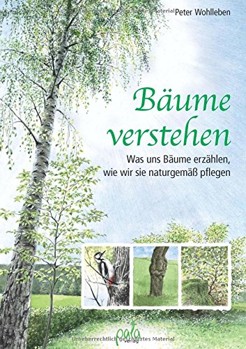 Buchseite und Rezensionen zu 'Bäume verstehen: Was uns Bäume erzählen, wie wir sie naturgemäß pflegen' von Peter Wohlleben