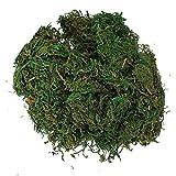 SODIAL(R) Green Artificial Reindeer Moss For Lining Plant Flower Garland Decor