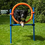 Dog Agility Sprungring