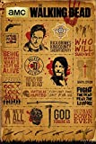 GB Eye The Walking Dead, Infographic Maxi-Poster, mehrfarbig, 61 x 91,5 cm