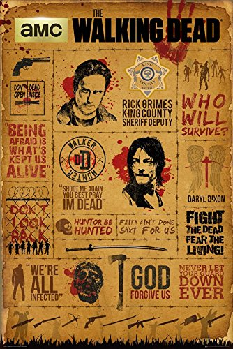 Grupo Erik Editores The Walking Dead Infographic Poster