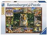 Ravensburger 17424 - Welt der Tiger - 5000 Teile Puzzle (153x101 cm)
