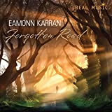 Songtexte von Eamonn Karran - Forgotten Road