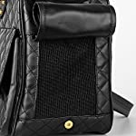 BELLAMORE GIFT Pet Breathable Carrier Bag Airline Approved Travel Dog Carrier for Pug Kitten Chihuahua (A) 14