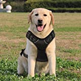 Funkeen® Hundegeschirr (Schwarz), kein Ziehen, verstellbar, Weiches Brustgeschirr, reflektierend, atmungsaktiv, Leichtes Hundegeschirr für Kleine, mittelgroße und große Hunde