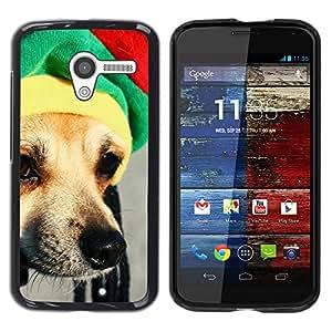 Vortex Accessory Coque Étui Housse De Protection Pour Motorola Moto X ( 1St Gen Only ) - Rasta Hat Dog Chihuahua Muzzle Snout