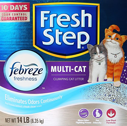 clorox-company-the-cat-litter-multi-cat-scoopable-scented-14-lbs