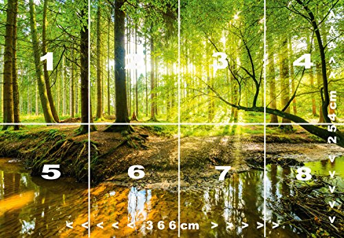 Fototapete Wald 366 x 254 cm Bäume Sonne Schlafzimmer Tapete ...