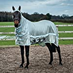 Derby House Pro Fly Rug 11