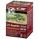 Hobby 37318 UV-Reptile vital Power, 160 W
