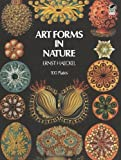 Image of Art Forms in Nature