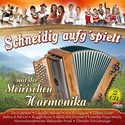 Schneidig aufspielt mit der Steirischen Harmonika