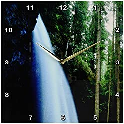 3dRose dpp_207072_2 USA, Oregon, a Waterfall in An Old-Growth Forest Wall Clock, 13 by 13