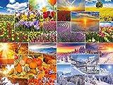 """""""VIER JAHRESZEITEN"""": 100-er Postkarten-Set Natur / Landschaften (20 Motive á 5 St.) im Frühling, Sommer, Herbst und Winter"""