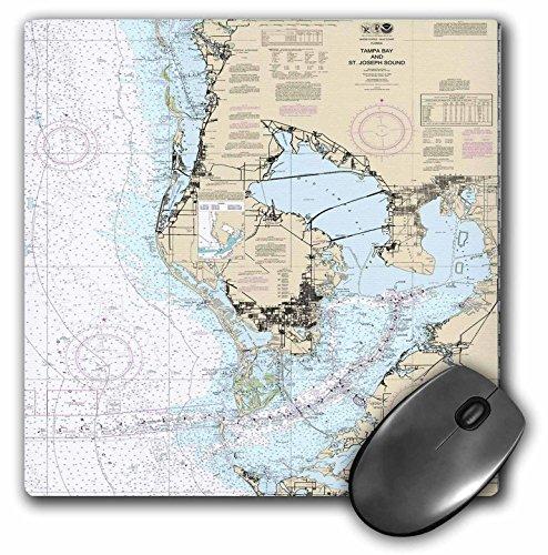 3D Rose matt Finish Maus Pad–20,3x 20,3cm Druck einer Seekarte von Tampa Bay 8 x 8
