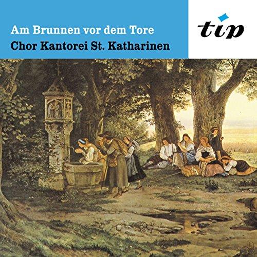 Schubert & Brahms: Am Brunnen ...
