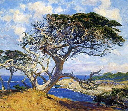 Das Museum Outlet-Monterey Cypress-A3Poster