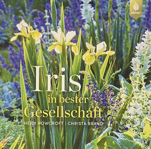 Iris in bester Gesellschaft: Inspirierende Ideen für die Verwendung von Schwertlilien im Garten