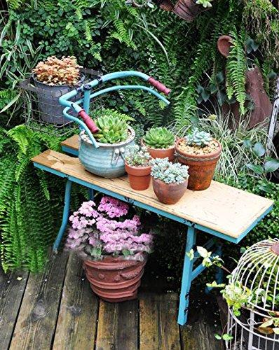 ZENGAI Dekorative Blumen Racks Iron Bicycle Blumenständer Outdoor Holz Blumentopf Display Ständer Verschiedene Regale Indoor Retro-Becken (Blumentopf Holz Ständer)
