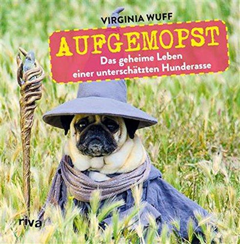 Aufgemopst: Das geheime Leben einer unterschätzten Hunderasse - Mops-fotos