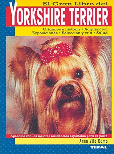 Yorkshire terrier por Anna Vila Coma