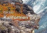 Wildes Kalifornien (Wandkalender 2020 DIN A4 quer): Wildes Kalifornien: Küste, Berge, National Parks. Naturfreunde kommen in Kalifornien auf ihre Kosten. (Monatskalender, 14 Seiten ) (CALVENDO Natur) - Bettina Blaß