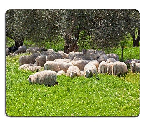 liili-tapis-de-souris-tapis-de-souris-en-caoutchouc-naturel-troupeau-de-mouton-a-poils-longs-se-repo