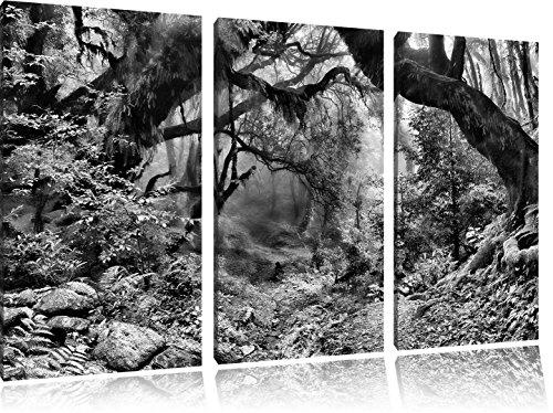 monocrome-mystic-rainforest-120x80-immagine-su-tela-3-pezzi-tela-di-canapa-xxl-immagini-enormi-compl