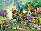 DIY Vorgedruckt Leinwand-?lgem?lde Geschenk f¨¹r Erwachsene Kinder Malen Nach Zahlen Kits Home Haus Dekor - Blumen Fahrrad 16 * 20 Zoll