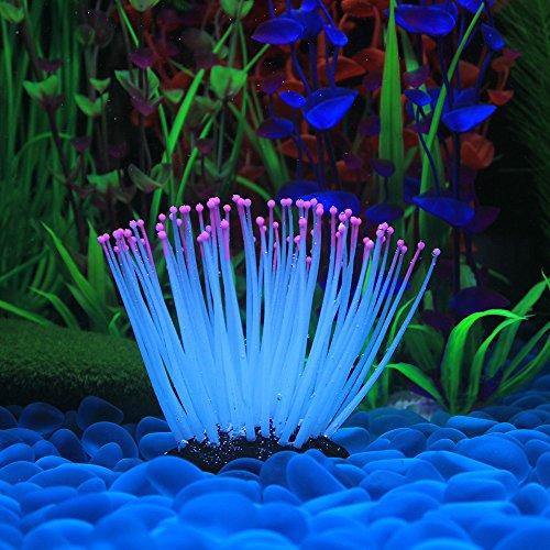 Decdeal Glühende Künstliche Seeanemone für Aquarium - Süßwasser-aquarium Pflanzen