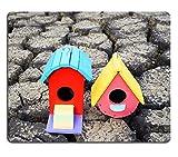 luxlady Mousepads bunt Vogelhaus auf Crack Erde Bild 21006031Individuelle Art Desktop Laptop Gaming Mauspad