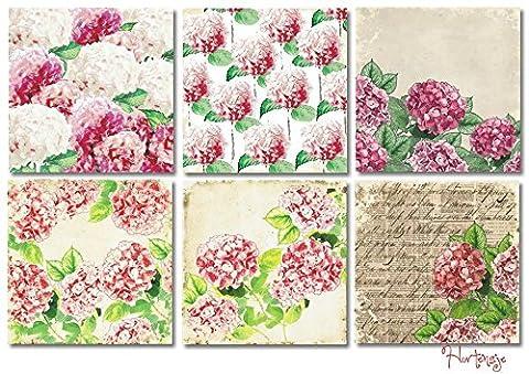 Paper Moon -6 feuilles papier de Qualité scrapbooking 20cm x 20cm - Hortensias