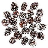 Keriber 24Pezzi Neve Natale pigne Ornamento pigne Naturale con Stringa Ciondolo Crafts Etichetta Regalo per Albero di Natale Festa Decorazione da Appendere