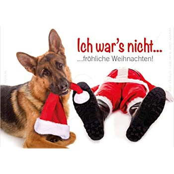 Tierische Weihnachtsgrüße.Postkarte Weihnachten Kommt Immer So Tierisch Schnell Amazon De