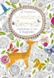 Woodland Secrets Postcard Book: Adventures in Ink and Imagination (Colouring Postcard Books)