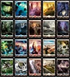 MTG Zendikar 20 FULL ART Land Set MINT by Magic: the Gathering