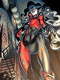 Harley Quinn - Pistole Rauchmelder bereit gerahmt Leinwand - 60 x 80 x 3.8cm (24 x 32 x 1,5 Zoll) - mit Klammern und Rahmer Seil