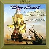 Sonate F-dur op. 1 - Nr. 11 HWV 369 II Allegro fuer Altblockfloete und Basso Continuo (Fagott und Orgel)