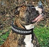 Halsband Leder Indigo Mosaik Braun Schwarz extra Breit M L XL Lederhalsband Hund Tysons Schwarz (L, Schwarz)