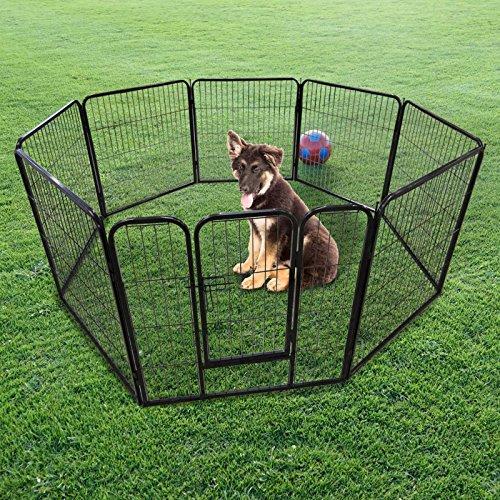 Spazio libero recintato Cuccioli Recinzione L 77 x 101 cm
