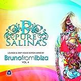 Pure Salinas, Volume 4 von Bruno