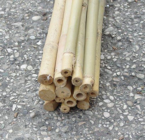 Ferritalia Lot de 5 cannes en bambou pour support des potagers et autres utilisations, 180 cm