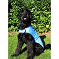 Prestige Cool Dog Cooling Coat